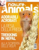 NATURE & ANIMALS N.18