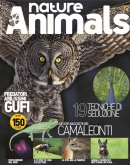 NATURE & ANIMALS N.09