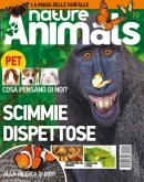 NATURE & ANIMALS N.19